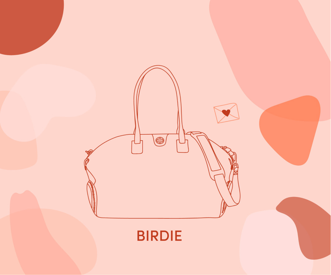 illustration bag birdie